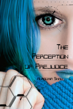 The Perception of Justice Book Cover